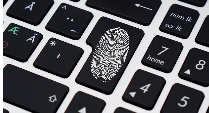 Bezpieczeństwo, Cyberprzestępcy zatrzymani Wykradli tysięcy danych - zdjęcie, fotografia